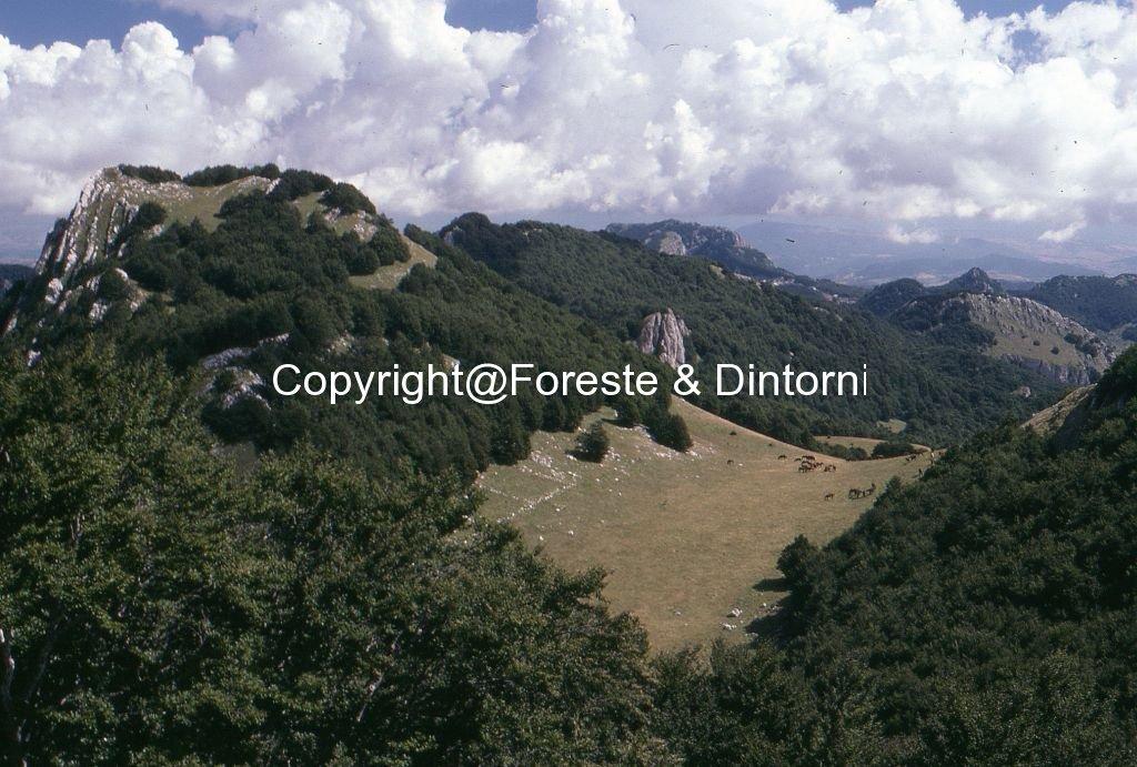 Monte Secine