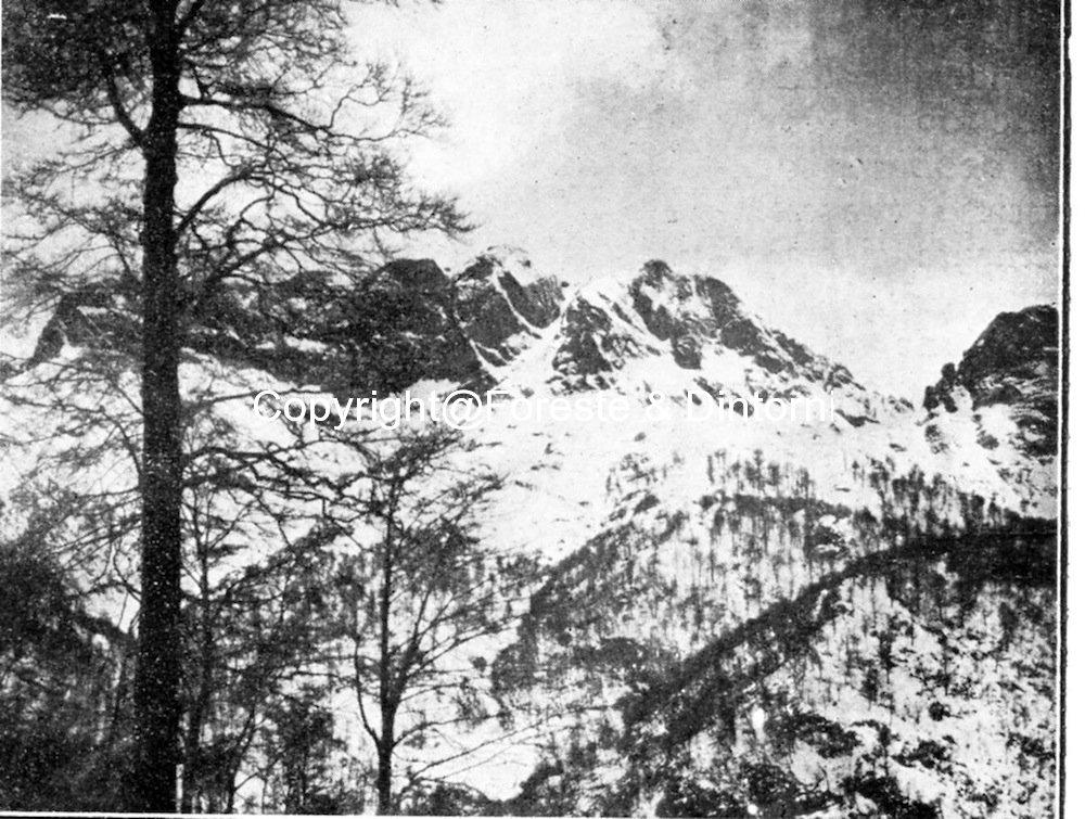 Monte Cavallo e Foce di Cardeto
