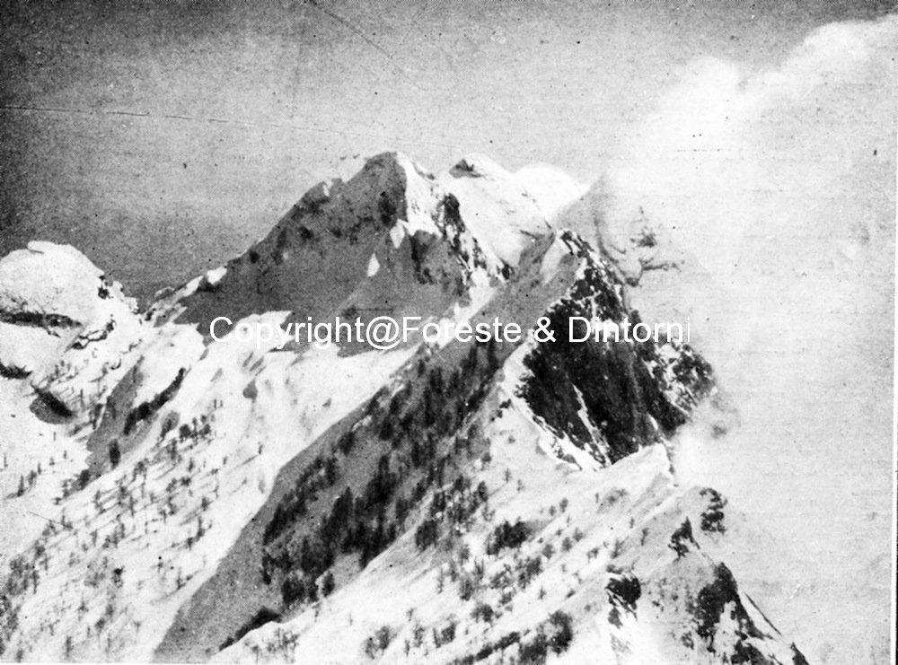 Monte Cavallo Grondilice