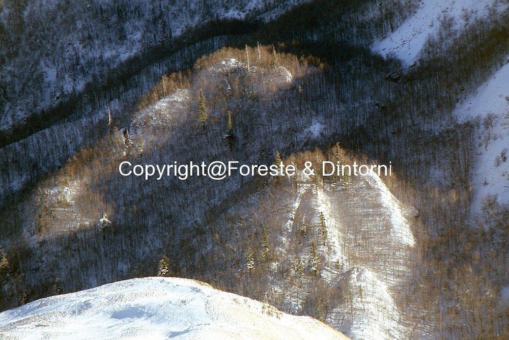 Monti della Laga. Rio Castellano