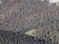 Val Cervara - Villavallelonga
