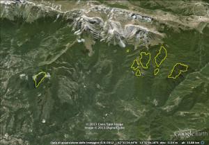 Localizzazione schematica dei nuclei di diffusione naturale dell'abete